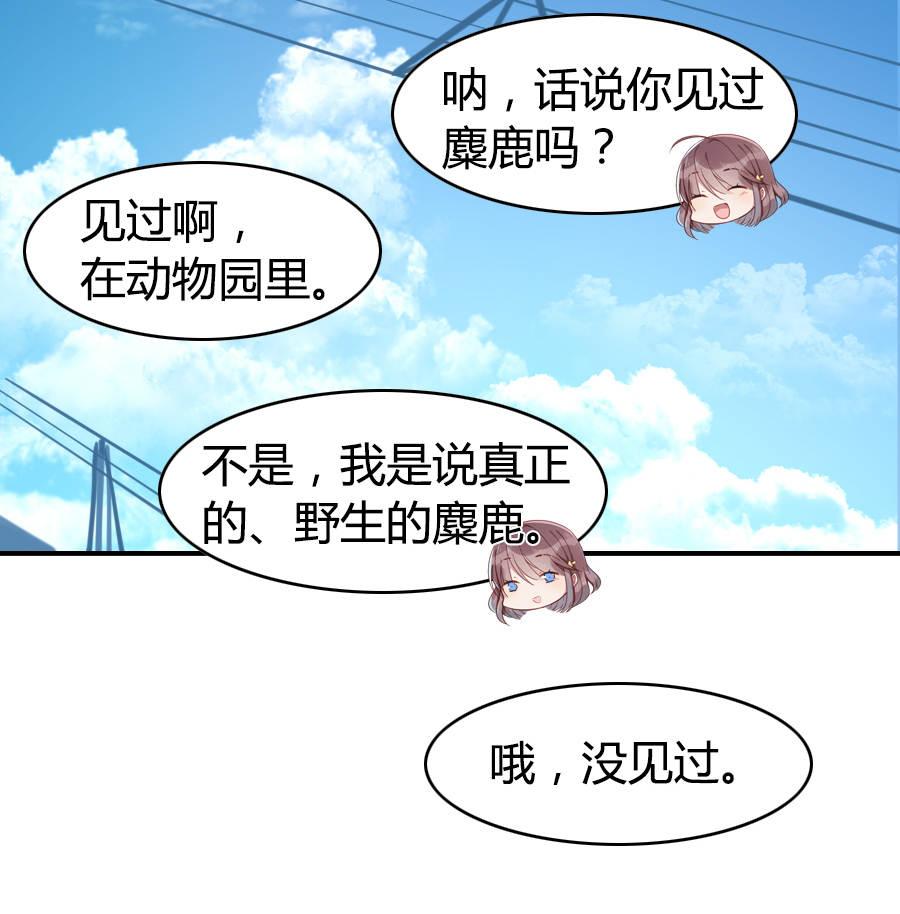 少年游第10话  麋鹿呀麋鹿 柚子柚子!! 第 5